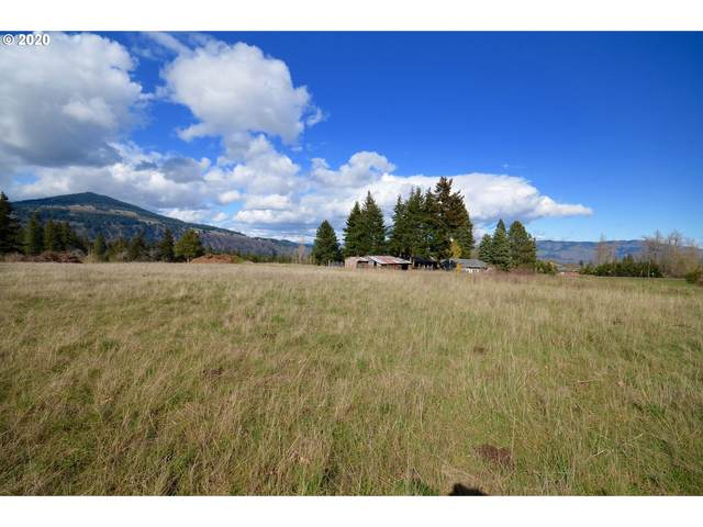 4450 Post Canyon Dr, Hood River, OR 97031 (MLS #20147441) :: Next Home Realty Connection
