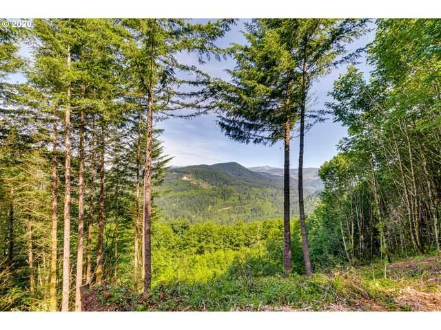 Cedar Falls Rd #2, Washougal, WA 98671 (MLS #20152818) :: Fox Real Estate Group