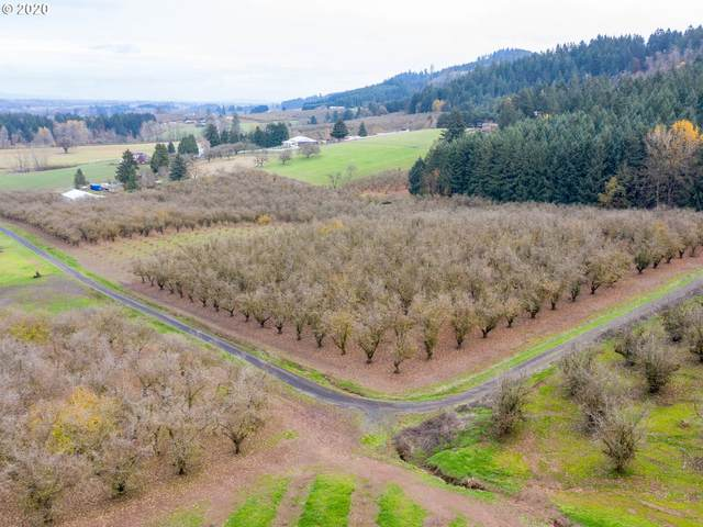 NW Hillside Rd, Forest Grove, OR 97116 (MLS #20160841) :: TK Real Estate Group