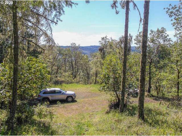 0 Valley Rd #1601, Roseburg, OR 97471 (MLS #20169330) :: Fox Real Estate Group