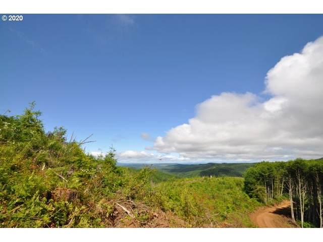 Conyers Creek Rd, Clatskanie, OR 97016 (MLS #20173488) :: Next Home Realty Connection