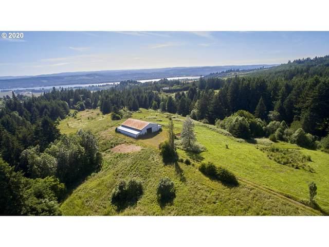 6215 Green Mountain Rd, Woodland, WA 98674 (MLS #20201033) :: Fox Real Estate Group