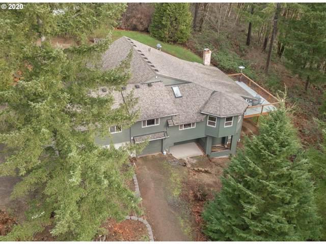 36615 NE Ridgeview Dr, Yacolt, WA 98675 (MLS #20202099) :: Song Real Estate