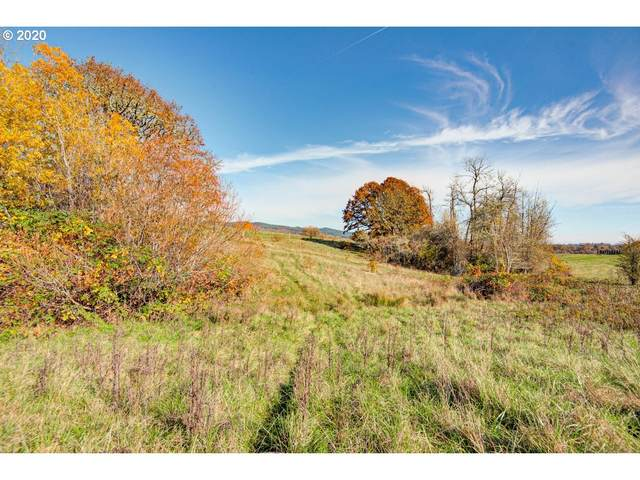 0 SW Pittman Rd, Sheridan, OR 97378 (MLS #20213598) :: Next Home Realty Connection