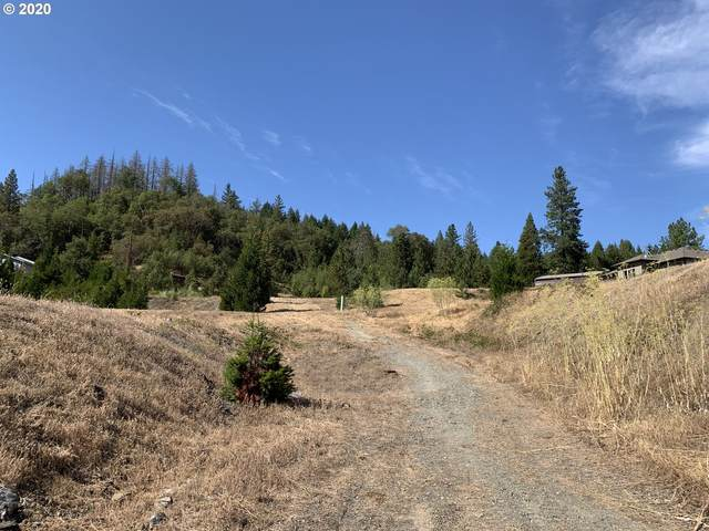 0 SE Third St, Canyonville, OR 97417 (MLS #20230831) :: Holdhusen Real Estate Group