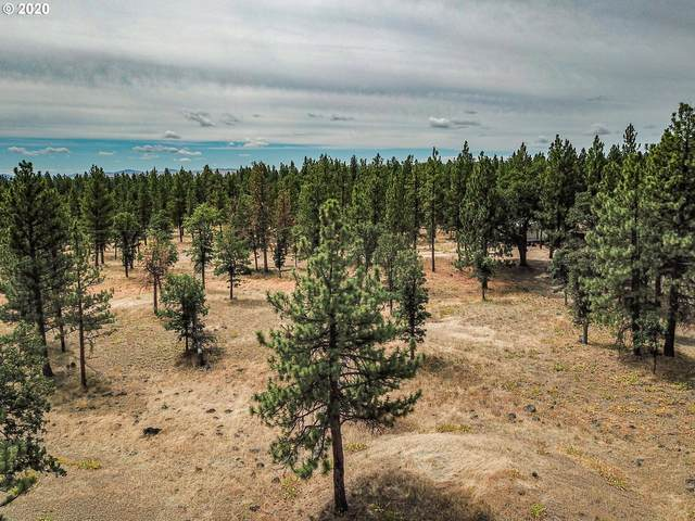 269 A S Fairway Rd, Wamic, OR 97063 (MLS #20236513) :: Lux Properties