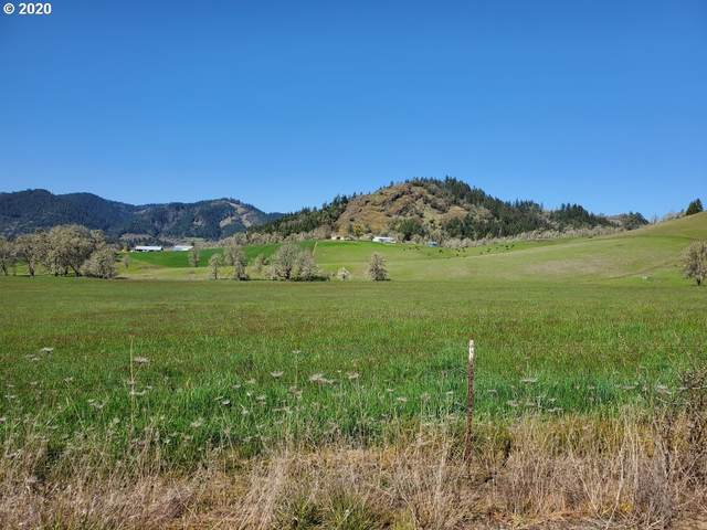 1965 Olalla Rd, Winston, OR 97496 (MLS #20237047) :: Townsend Jarvis Group Real Estate