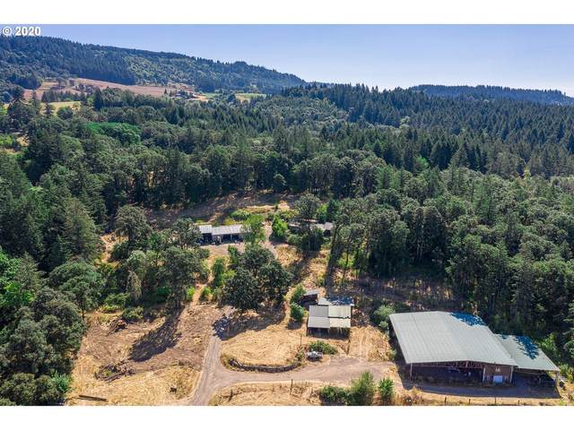 21360 NE Dopp Rd, Newberg, OR 97132 (MLS #20242825) :: Next Home Realty Connection