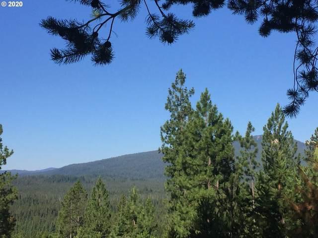 28 Diamond Peak Dr, Crescent Lake, OR 97733 (MLS #20247797) :: Holdhusen Real Estate Group