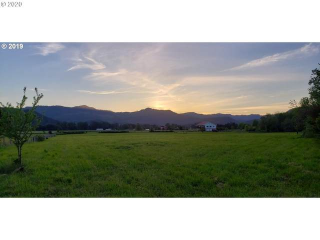 8088 Garden Valley Rd, Roseburg, OR 97471 (MLS #20251717) :: Townsend Jarvis Group Real Estate