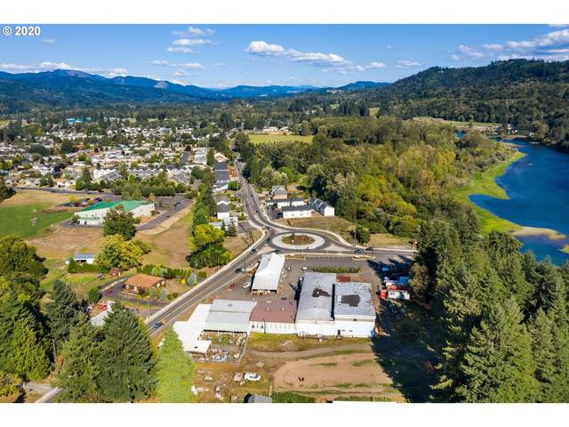 1695 Lewis River Rd, Woodland, WA 98674 (MLS #20256501) :: Song Real Estate