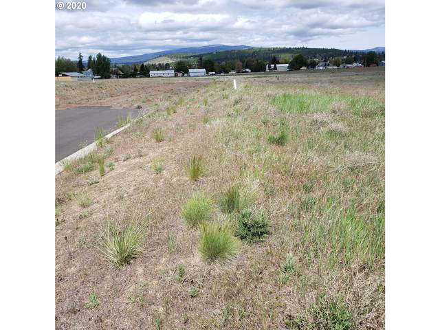 7 N Pioneer Way Aprox, Goldendale, WA 98620 (MLS #20257258) :: Next Home Realty Connection