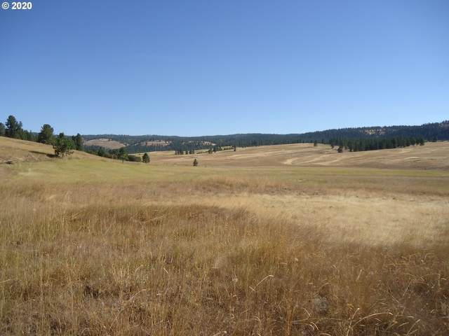 0 2N43, Wallowa, OR 97885 (MLS #20260518) :: Beach Loop Realty