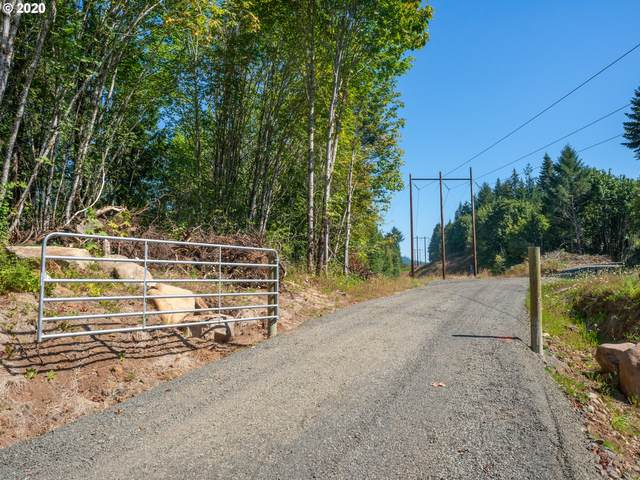 Deerhorn Rd #1, Leaburg, OR 97489 (MLS #20273883) :: Townsend Jarvis Group Real Estate