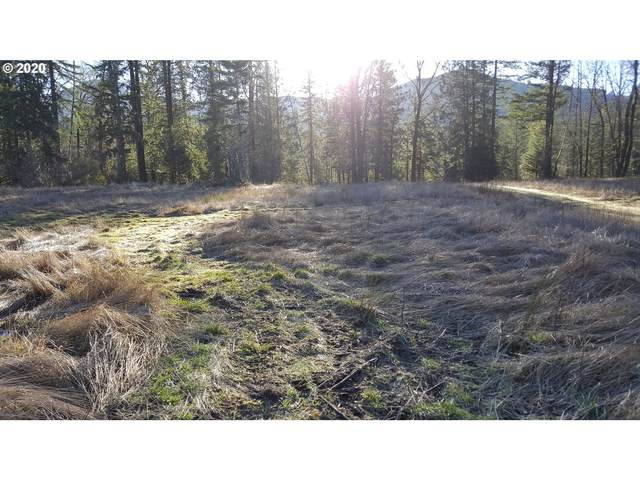 22542 E Brightwater Way, Rhododendron, OR 97049 (MLS #20274243) :: Stellar Realty Northwest