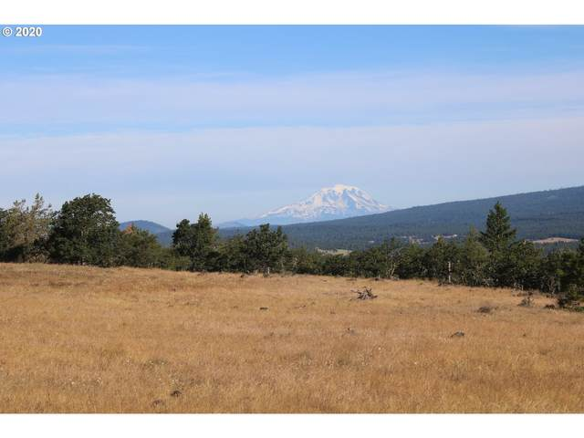 Cragganmore Dr, Goldendale, WA 98620 (MLS #20279466) :: Change Realty