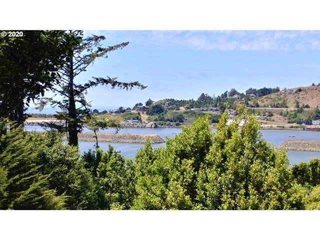 Riverview, Gold Beach, OR 97444 (MLS #20281413) :: Change Realty