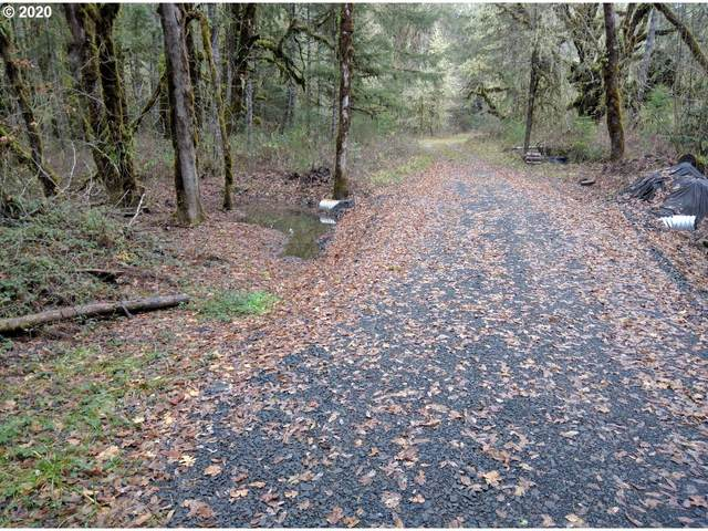 Carpenter Bypass Rd. #1000, Lorane, OR 97451 (MLS #20287567) :: Townsend Jarvis Group Real Estate