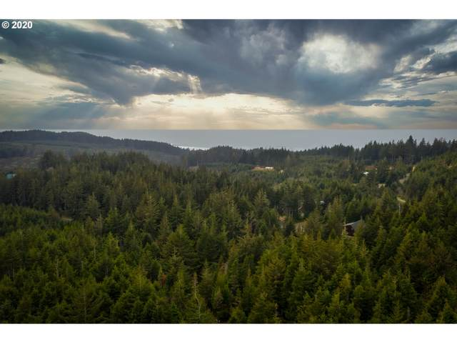 0 Seven Devils #100, Bandon, OR 97411 (MLS #20292078) :: Beach Loop Realty
