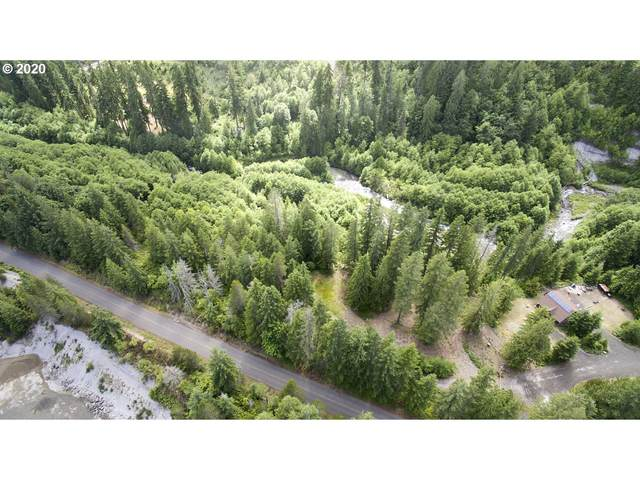 3 Lodge Pole Ln, Cougar, WA 98616 (MLS #20296481) :: Premiere Property Group LLC