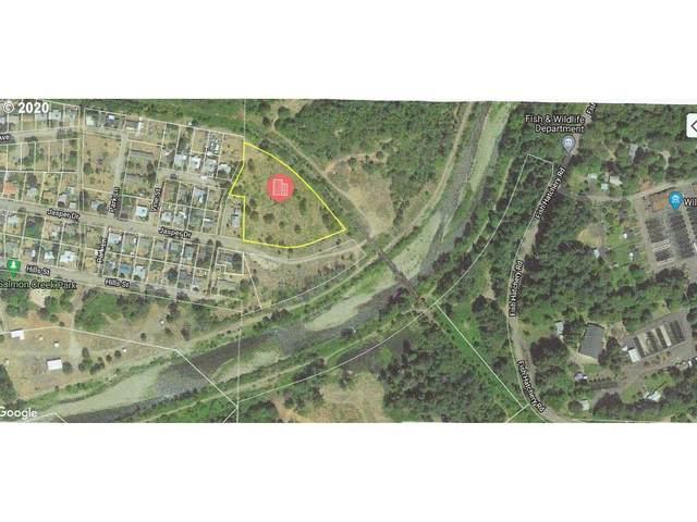 Jasper Dr., Oakridge, OR 97463 (MLS #20298061) :: Beach Loop Realty
