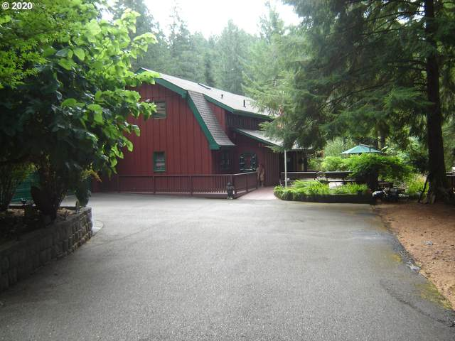 32361 State Highway 38, Elkton, OR 97436 (MLS #20300261) :: Beach Loop Realty