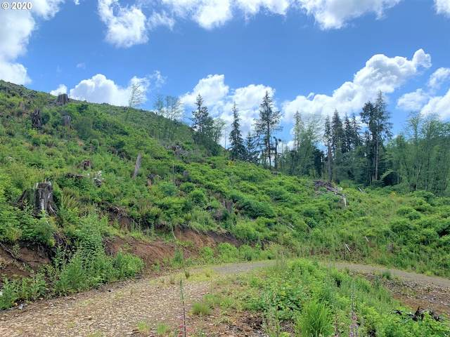 6500 Block Hwy 229, Lincoln City, OR 97367 (MLS #20301825) :: Townsend Jarvis Group Real Estate