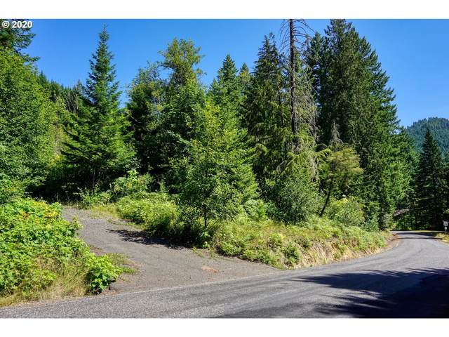 Bear Creek Lot 5,4, Carson, WA 98610 (MLS #20303670) :: Townsend Jarvis Group Real Estate
