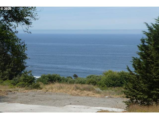 36710 Tinsley Ln, Gold Beach, OR 97444 (MLS #20307879) :: Beach Loop Realty