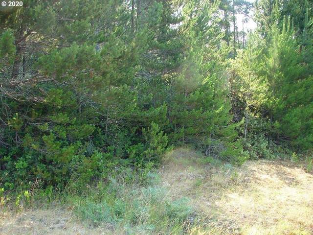 88625 Hwy 101, Florence, OR 97439 (MLS #20309113) :: Gustavo Group