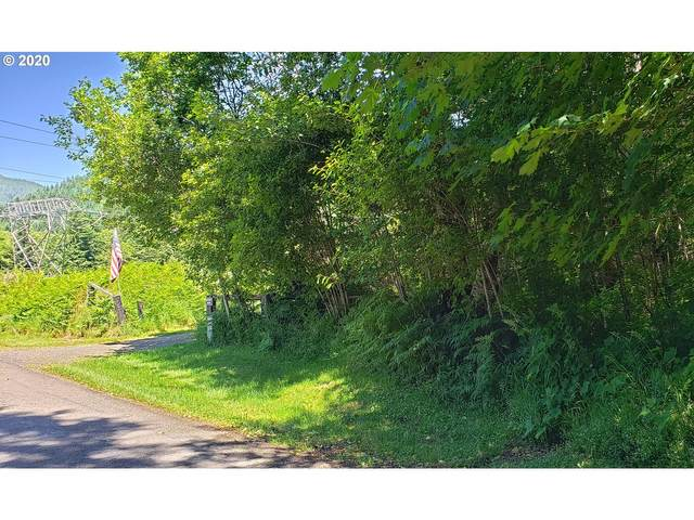 0 Aschoff Rd, Rhododendron, OR 97049 (MLS #20313699) :: Next Home Realty Connection