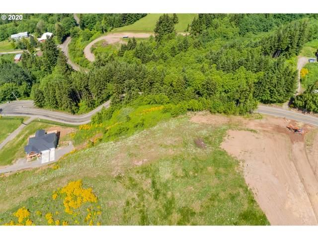 3 Green Mountain Rd, Woodland, WA 98674 (MLS #20319029) :: Fox Real Estate Group