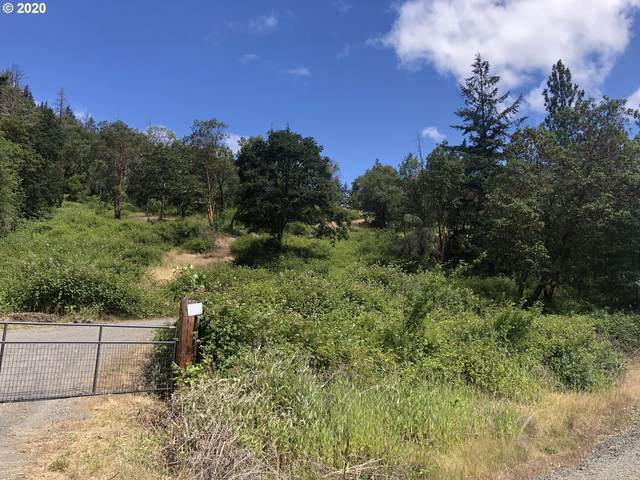 1360 Clarks Branch Rd, Myrtle Creek, OR 97457 (MLS #20322217) :: Change Realty