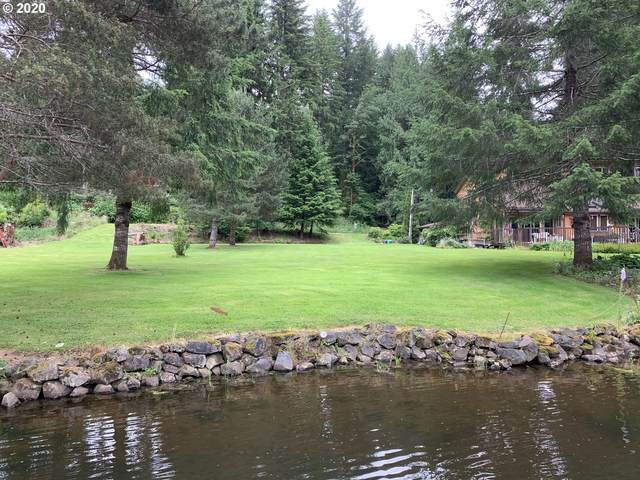10015 Beach Dr, Birkenfeld, OR 97016 (MLS #20328418) :: Next Home Realty Connection