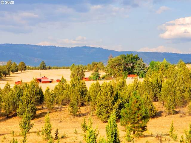 41229 Kahler Basin Rd, Spray, OR 97874 (MLS #20342650) :: Song Real Estate