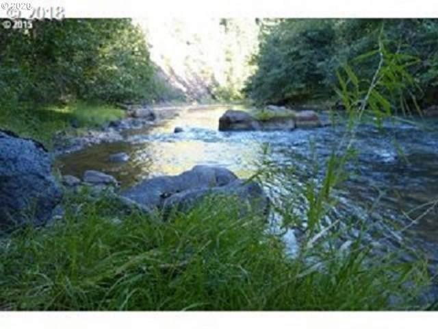 81 Cedar Springs, Trout Lake, WA 98650 (MLS #20348095) :: Brantley Christianson Real Estate