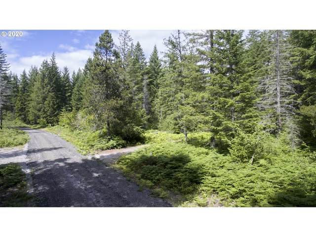 Lahar Ln #8, Cougar, WA 98616 (MLS #20357887) :: Premiere Property Group LLC