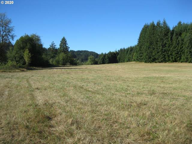 Neverstill Rd, Birkenfeld, OR 97016 (MLS #20358650) :: Townsend Jarvis Group Real Estate