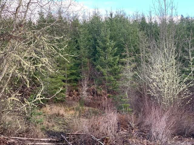 Timber Rd, Vernonia, OR 97064 (MLS #20359511) :: Next Home Realty Connection