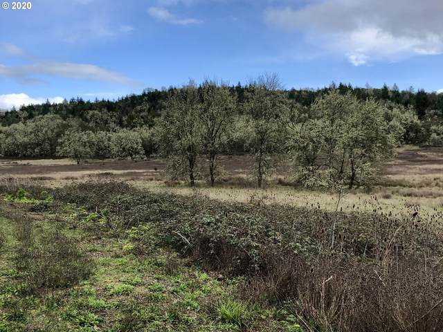620 SW Stearns Ln, Sutherlin, OR 97479 (MLS #20362201) :: Townsend Jarvis Group Real Estate