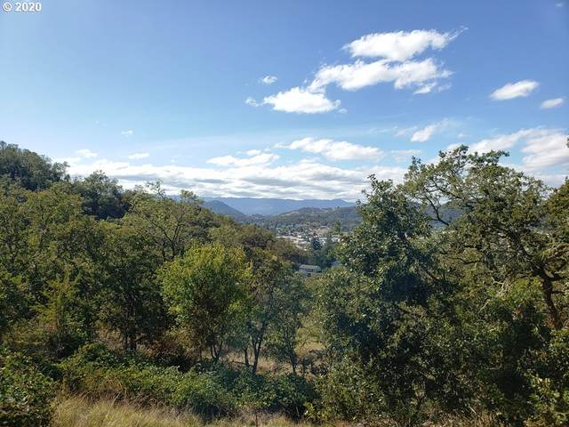 1200 NE Cambrian Ct, Roseburg, OR 97470 (MLS #20370237) :: Gustavo Group