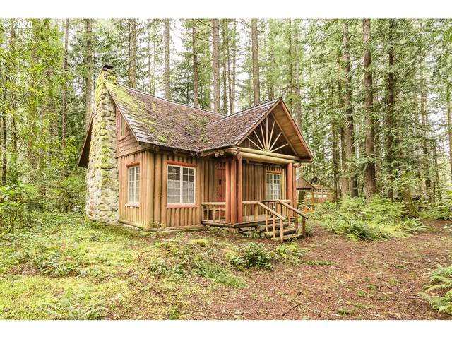 27401 E Holden Ave, Rhododendron, OR 97049 (MLS #20371013) :: Change Realty