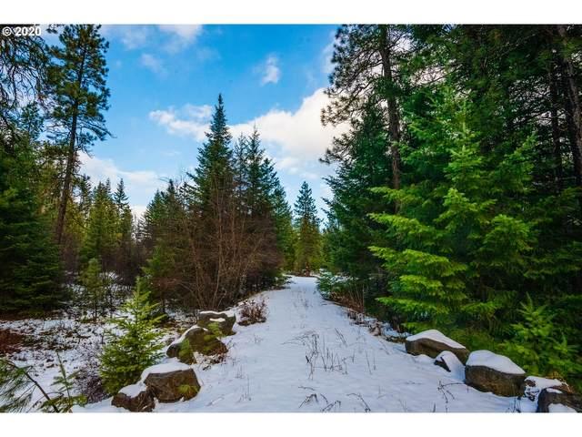 Hwy 141, Trout Lake, WA 98650 (MLS #20377534) :: Brantley Christianson Real Estate