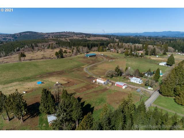 76265 Delena Mayger Rd, Rainier, OR 97048 (MLS #20386925) :: Premiere Property Group LLC