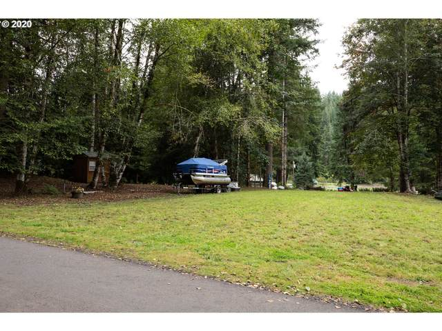 9871 Beach Dr, Birkenfeld, OR 97016 (MLS #20391265) :: Song Real Estate