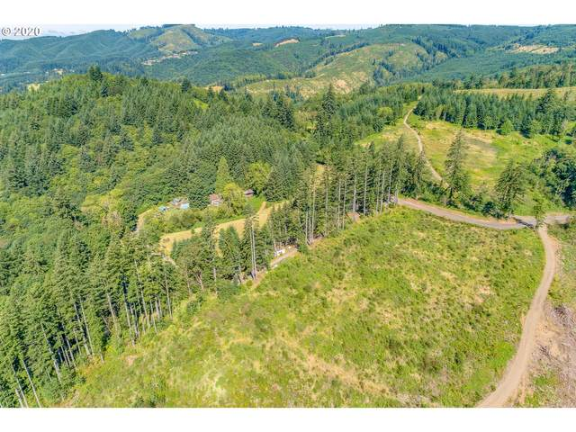 14 Paananen Rd, Woodland, WA 98674 (MLS #20394242) :: Next Home Realty Connection