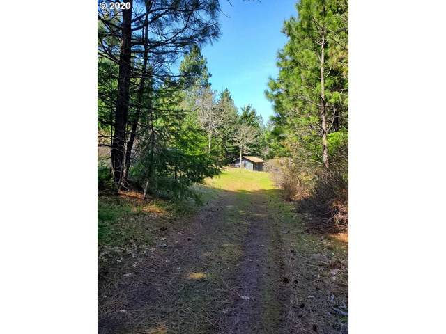 Suz Ridge Rd, Lyle, WA 98635 (MLS #20396281) :: Townsend Jarvis Group Real Estate