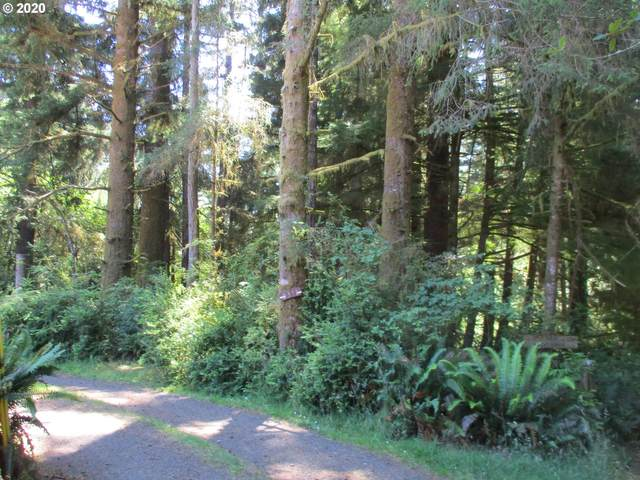 Helkat Trail, Florence, OR 97439 (MLS #20398024) :: Beach Loop Realty