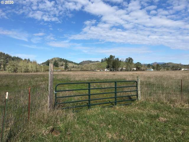0 Nonpareil Rd, Sutherlin, OR 97479 (MLS #20401969) :: Townsend Jarvis Group Real Estate
