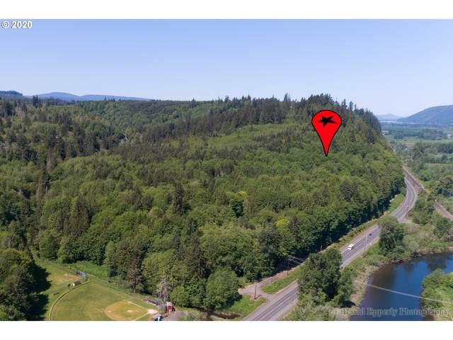 Hwy 47, Clatskanie, OR 97016 (MLS #20402720) :: Premiere Property Group LLC